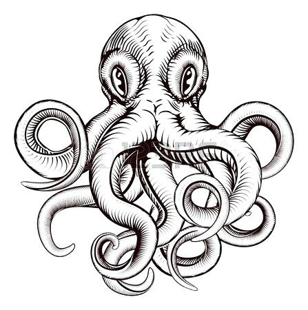 447x450 How To Draw A Realistic Octopus
