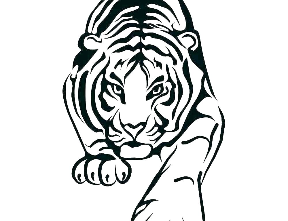1000x768 Coloring Pages Of Tigers Realistic Free Baby Tiger Detroit Cute