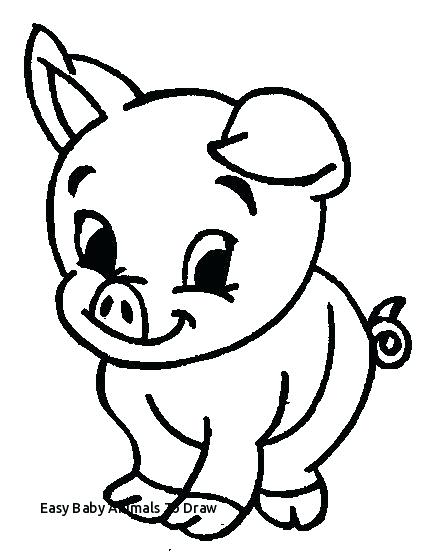 435x557 Baby Pig Drawing Awesome Ng Pages Of Pigs Top Kids How To Draw