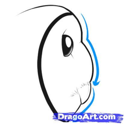 412x412 Draw A Barn Owl, Step
