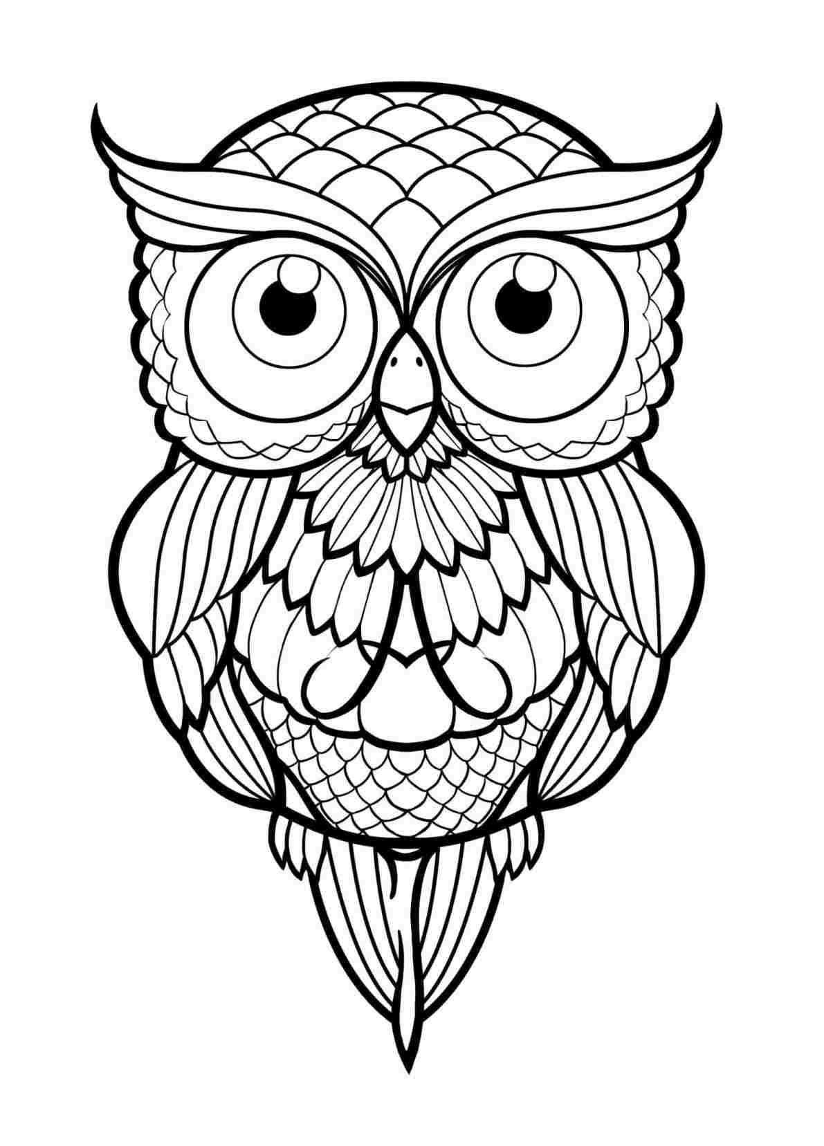 1191x1657 Easy Owl Drawing Simple Cute At Getscom Free For Personal Use