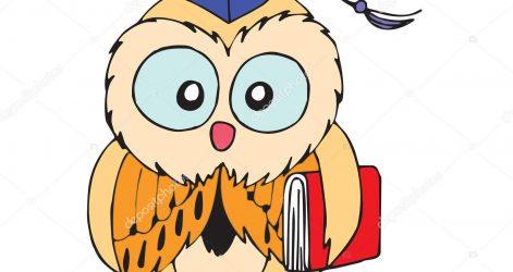 471x250 Owl Drawing Cartoon Realistic Face Step