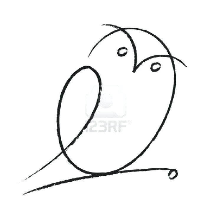 736x736 Owl Simple Drawing Outline Owl Drawing Instructions Nip