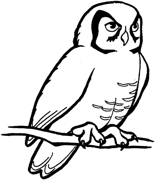 650x753 Owl Template
