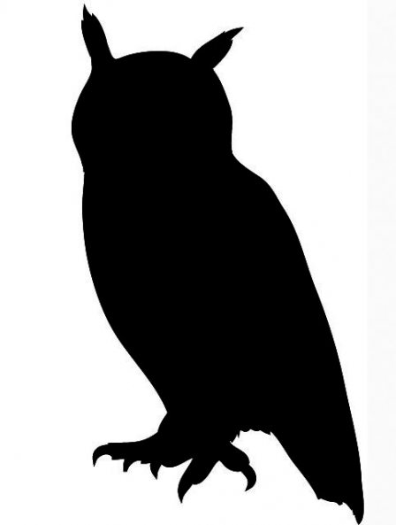 448x593 Barn Owl Clipart Black And White