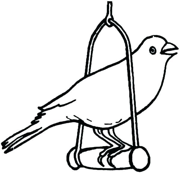600x579 Bird Coloring