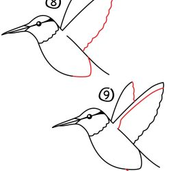 250x250 How To Draw A Birds Eye View Bird In Photoshop Realistic For Kids