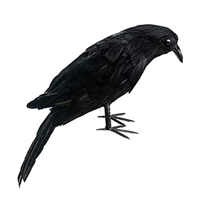 425x425 Fityle Lifelike Artificial Birds Realistic Raven