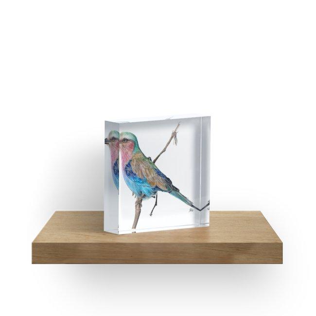 650x650 Realistic Bird Drawing Acrylic Blocks