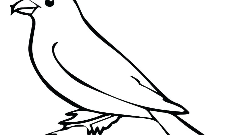 960x544 Bird Colouring Picture Coloring Pages Of Bird Houses Coloring