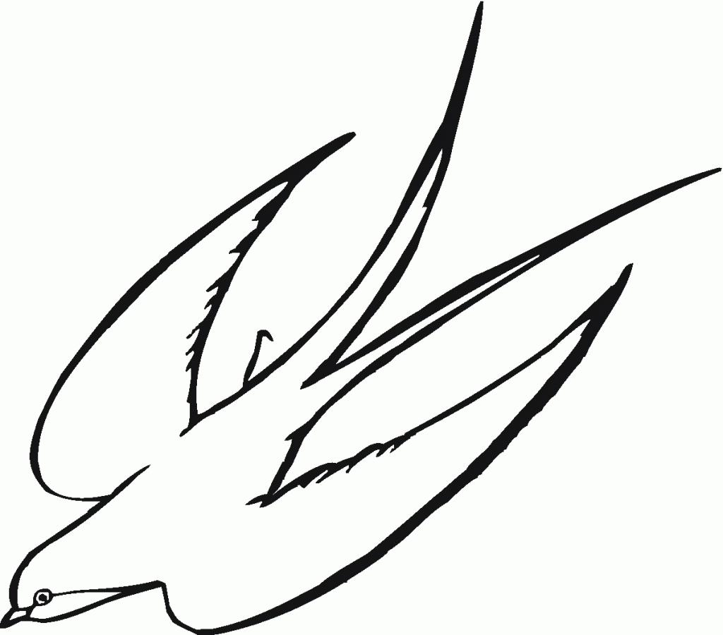 1024x900 Bird Drawing Step