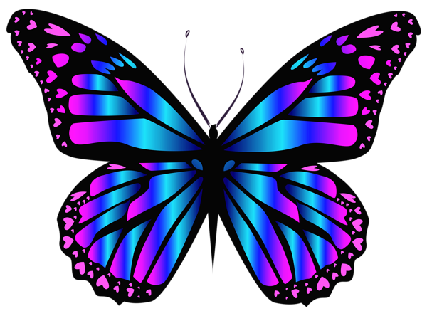 600x444 Collection Of Free Butterfly Drawing Realistic Download On Ui Ex