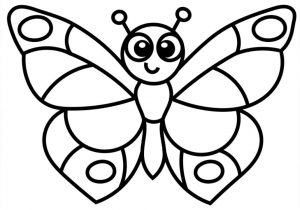 300x210 Butterfly Drawings With Color Easy How To Draw A Realistic
