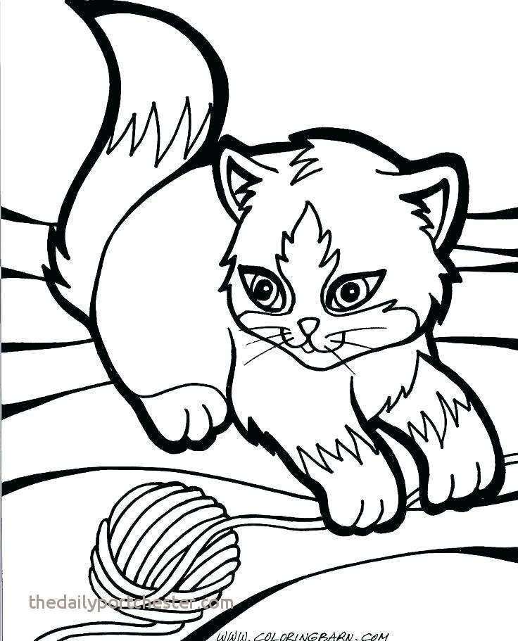 736x911 Cute Cat Coloring Pages Luxury Realistic Cat Coloring Pages