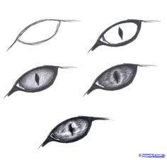 236x226 How To Draw Eyes Drawing Easy Drawings, Drawings, Cat Drawing