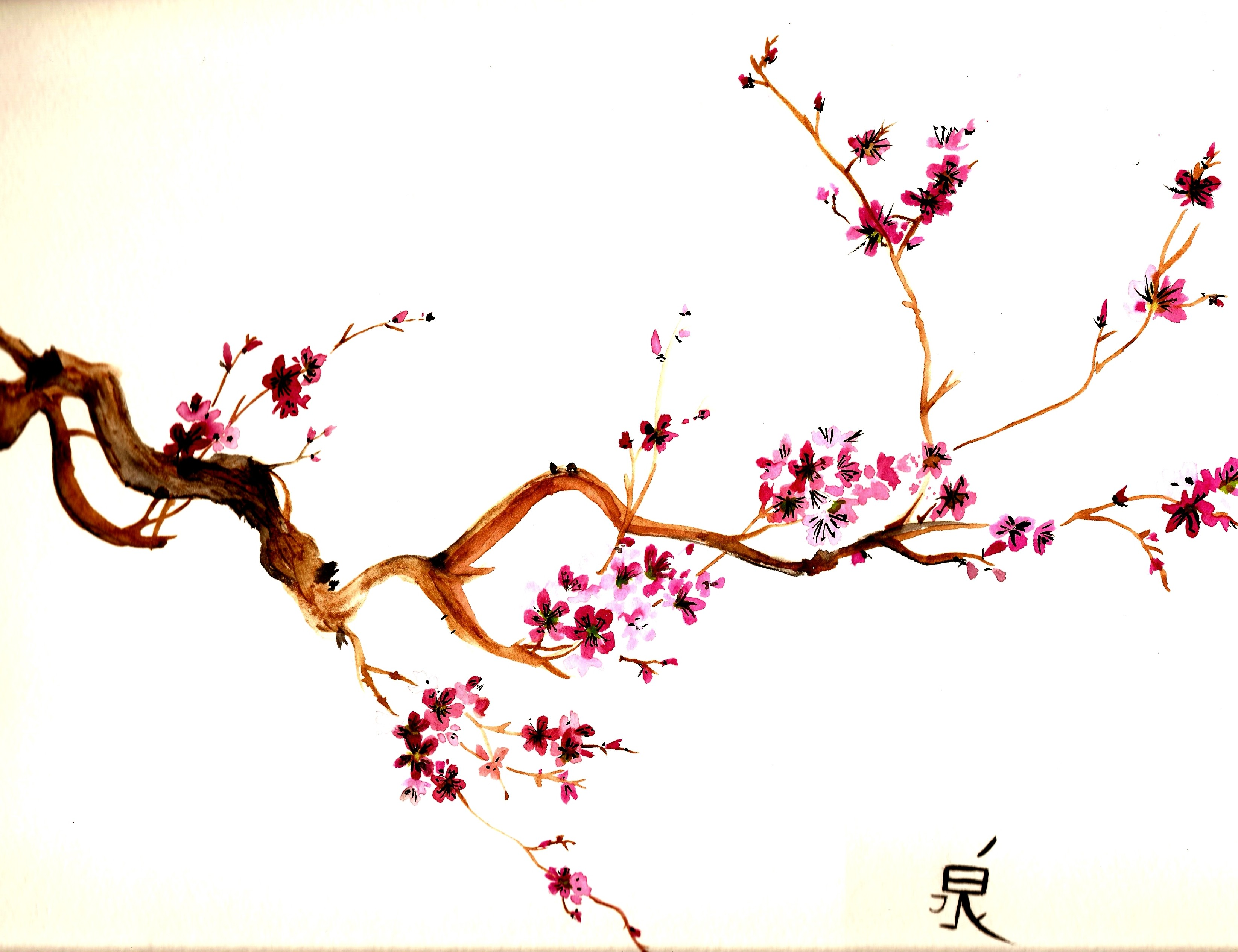 3290x2531 Blossom Drawing, Pencil, Sketch, Colorful, Realistic Art Images