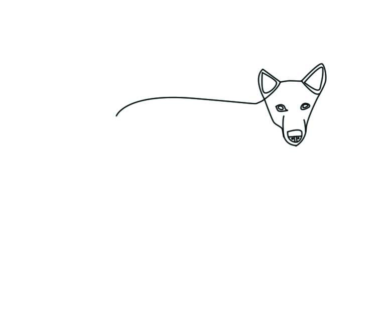 781x642 How To Draw A Dog Drawing