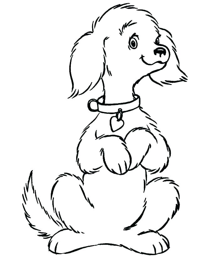 670x820 realistic dog coloring pages realistic dog coloring pictures