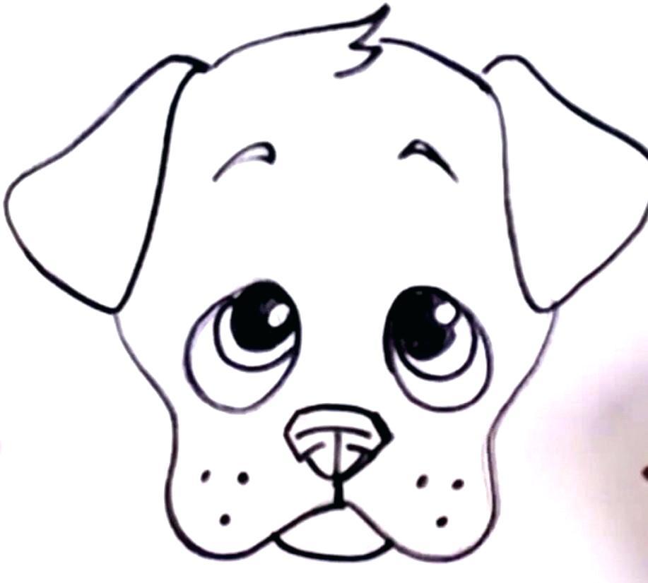 917x826 Realistic Cute Dog Drawing Easy