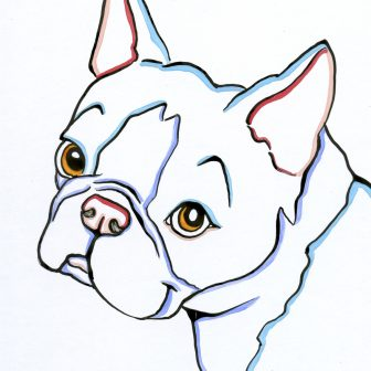 336x336 Boston Terrier Pencil Drawing Line Realistic Cute Cartoon Head