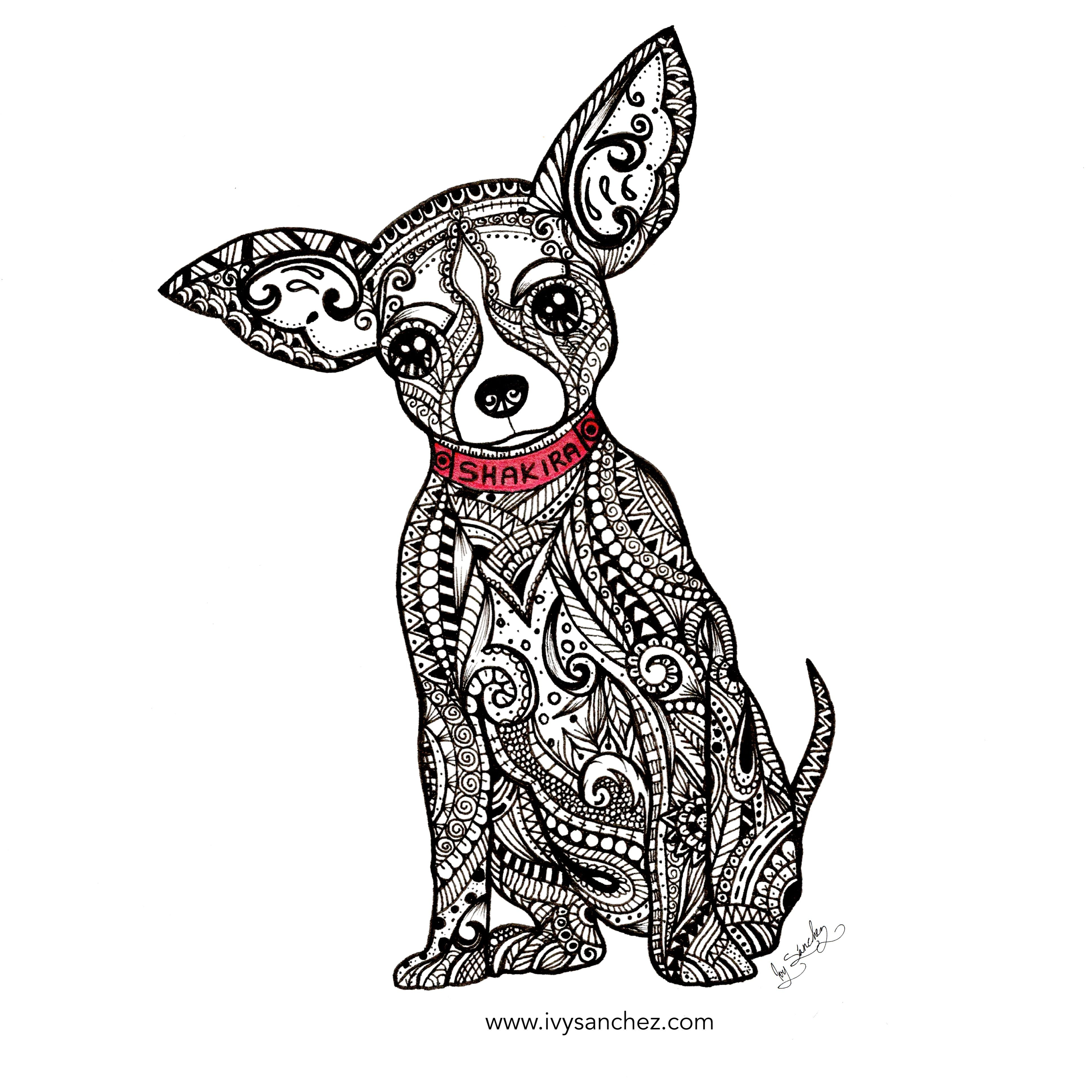 3872x3872 Chihuahua Drawing Easy Angry Realistic In Pencil Puppy Clipart