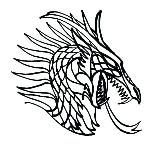 Realistic Dragon Drawing Free Download Best Realistic Dragon