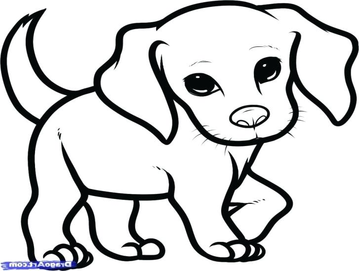 727x549 Puppy To Draw Learn How To Draw A Puppy With Puppy Cartoon Drawing