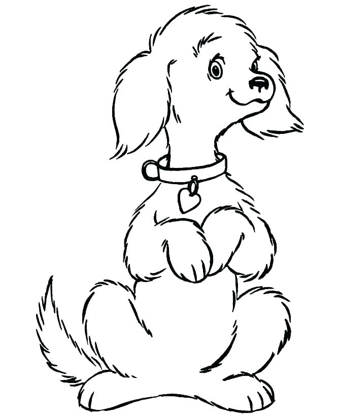 670x820 realistic dog coloring pages coloring realistic dog coloring pages