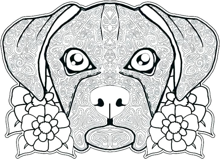 728x527 Boxer Coloring Pages Dog Printable Coloring Pages Boxer And Cat