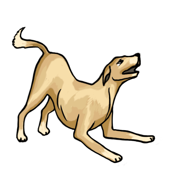 600x600 Collection Of Free Dogs Drawing Realistic Download On Ui Ex