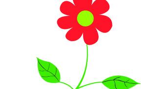 342x184 Easy Ways To Draw A Flower
