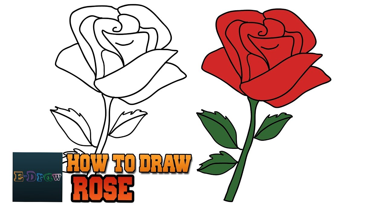 1280x720 How To Draw A Rose Easy Step