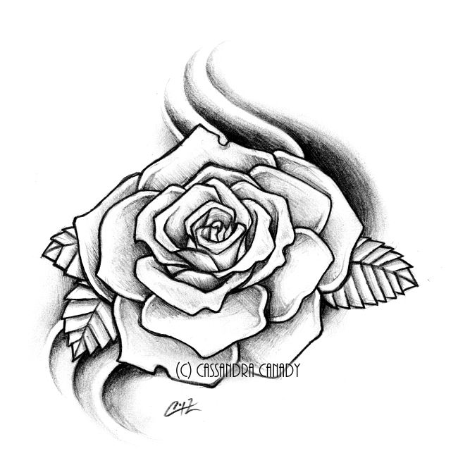 650x667 Realistic Rose Outline
