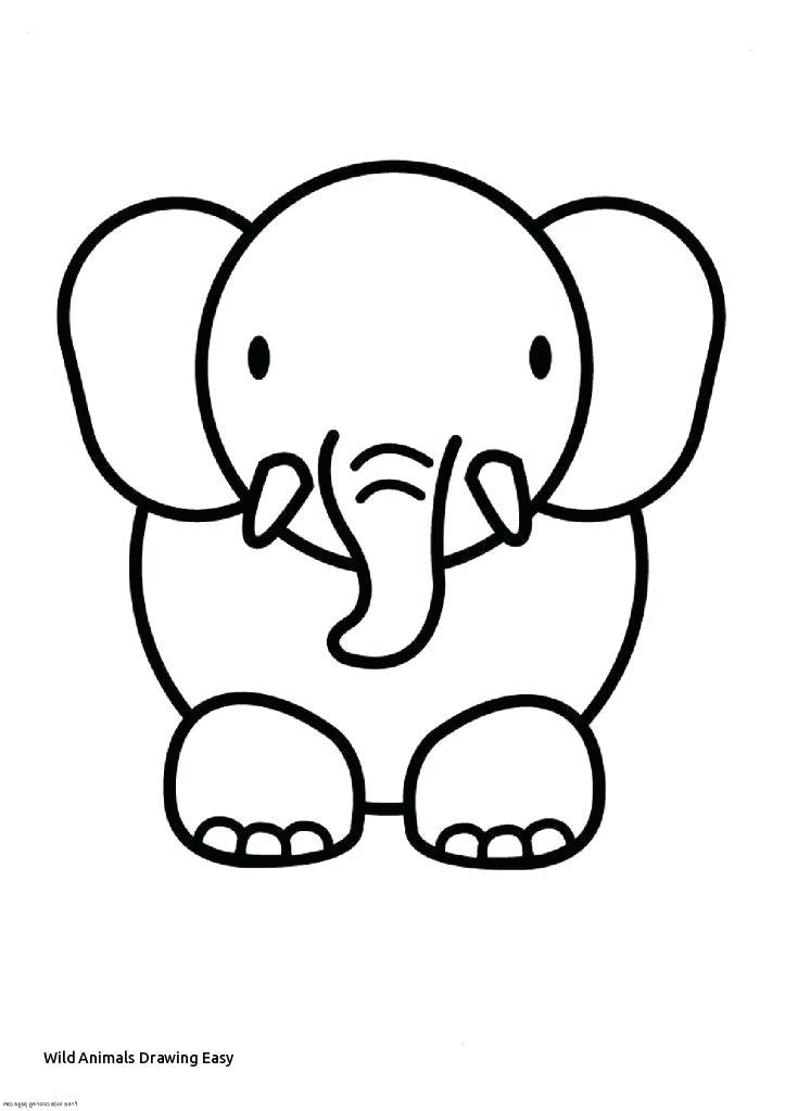 723x1024 wild animal drawings wild animals drawings realistic wild animal