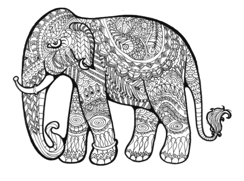 Realistic Elephant Drawing
