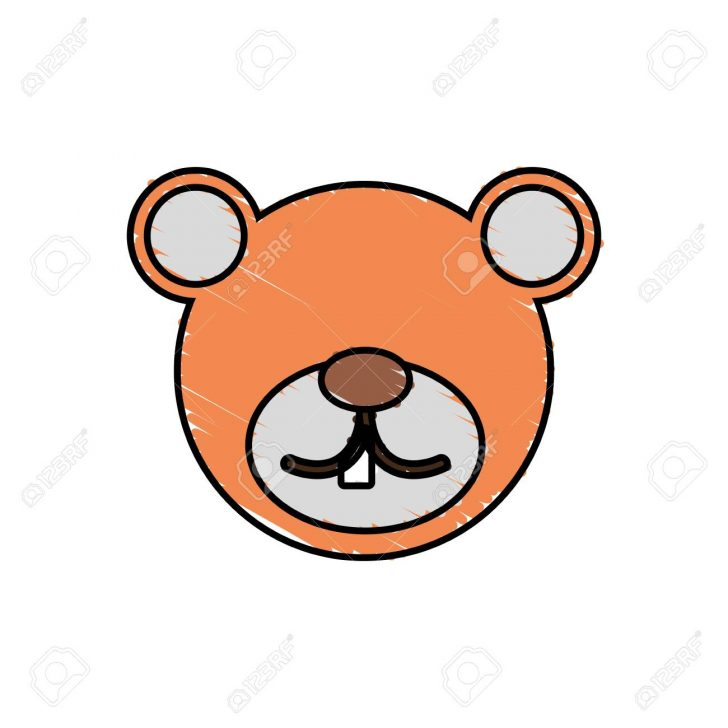 728x728 Bear Face Cartoon Drawing Tags Anime Pictures To Draw Ab Angel