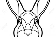 236x157 Realistic Bunny Face Drawing Tags Bridge Drawing Bus Braided