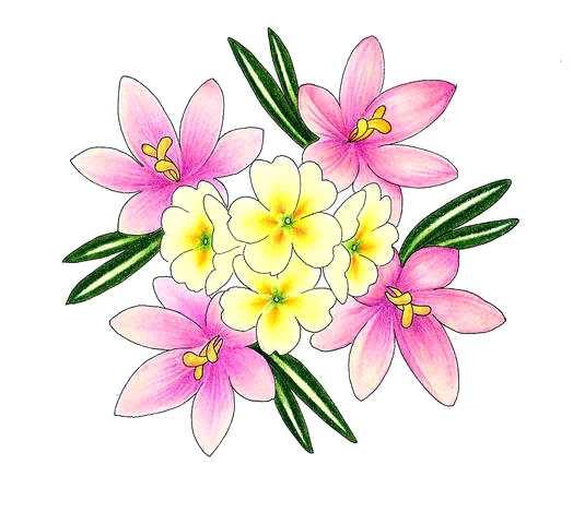 524x480 Drawings Of Flowers Daisies Flower Drawing Drawings Flowers Hearts