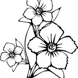 250x250 How To Draw A Realistic Flower Bouquet Step
