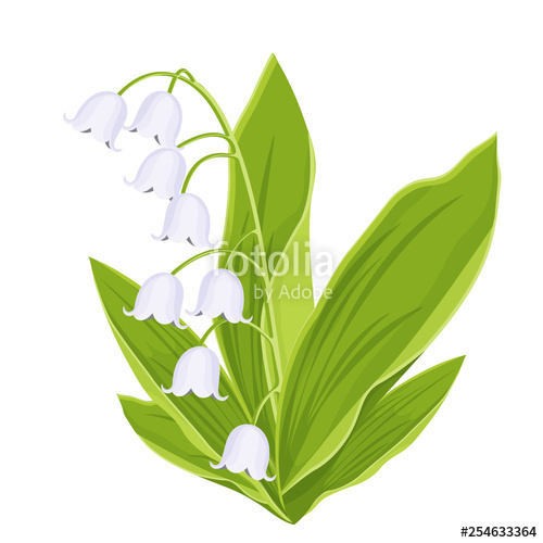 500x500 Lily Of The Valley, Spring Bouquet Of Delicate Flower, Vector