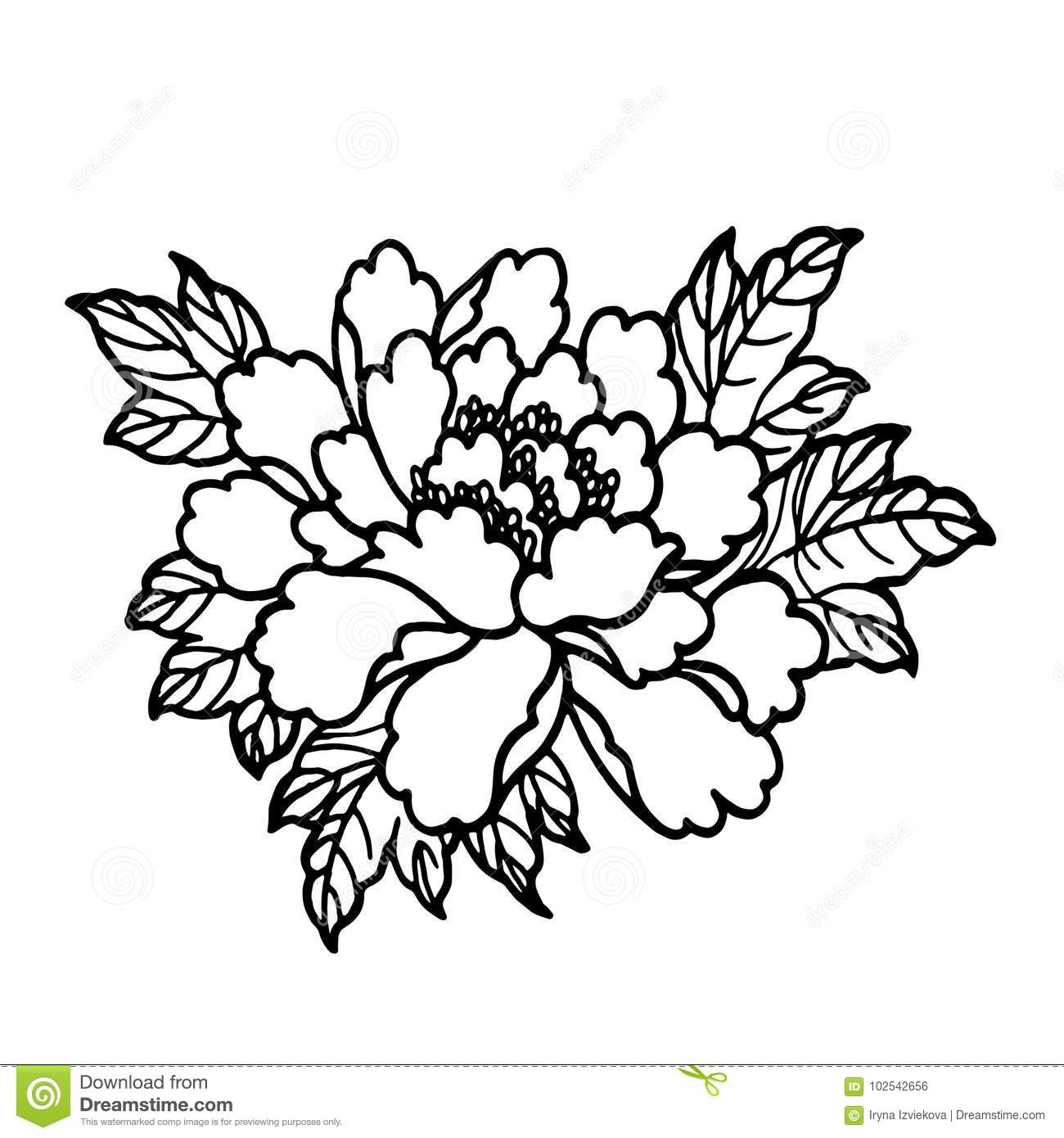 1300x1390 Realistic Flowers Coloring Pages Patterns Stylish Design Ideas