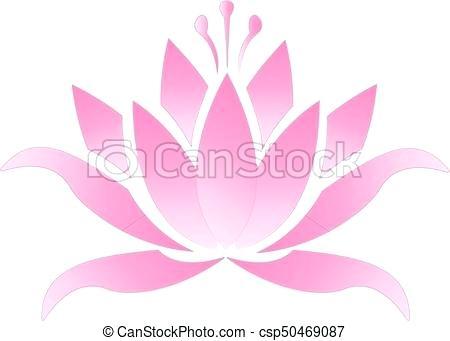 450x341 modern pink lotus flower and realistic pink lotus flower