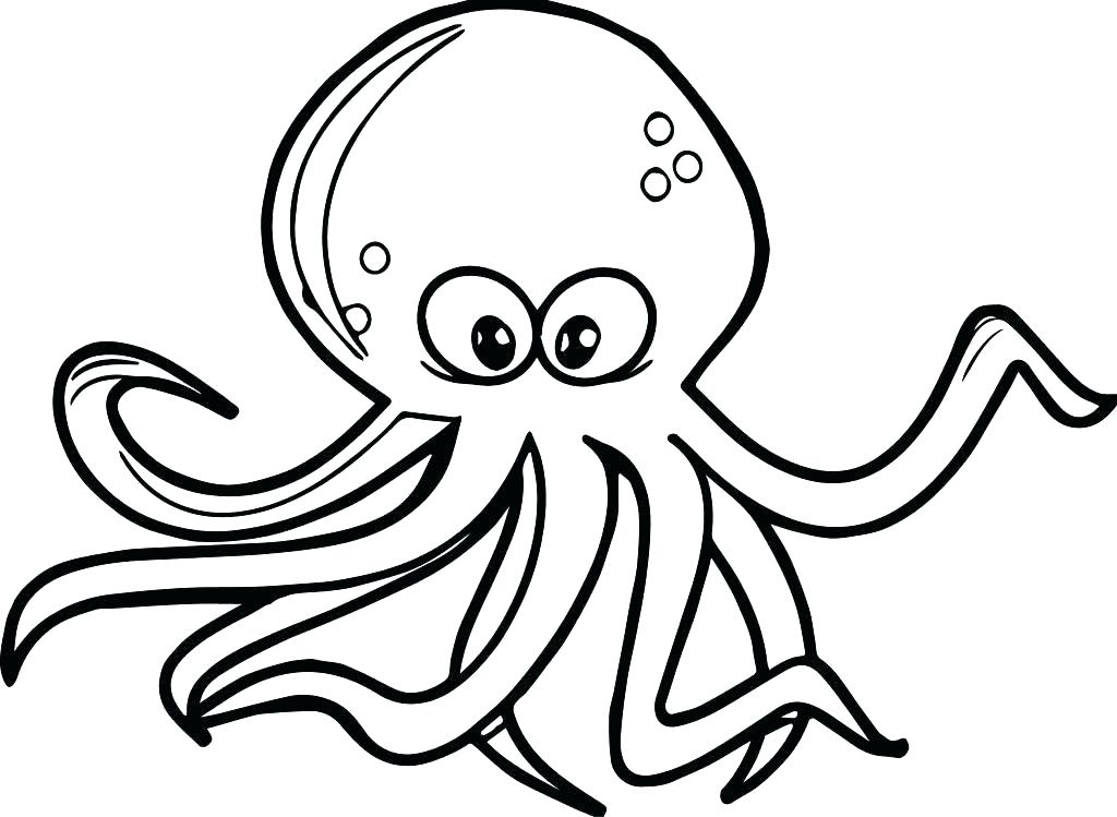 1024x749 octopus coloring octopus coloring realistic octopus coloring page