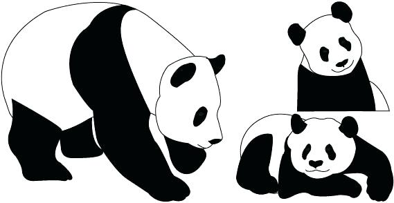 569x294 giant panda drawing draw panda giant panda drawing step