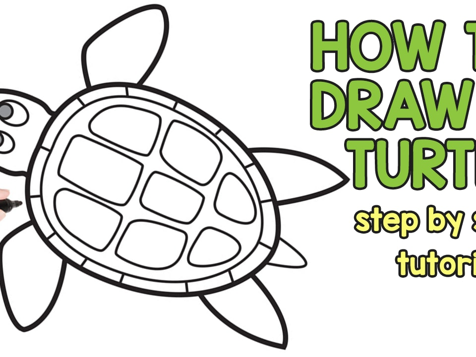 960x720 How To Draw A Turtle