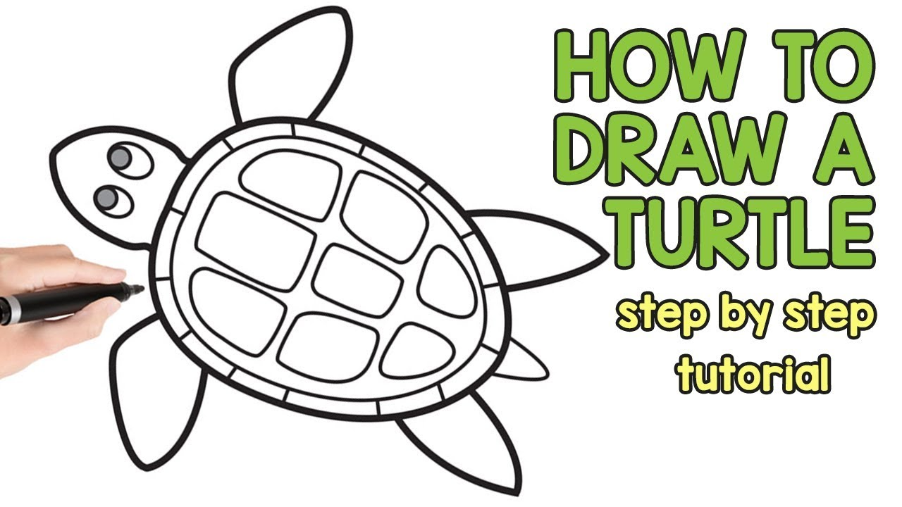 1280x720 How To Draw A Turtle