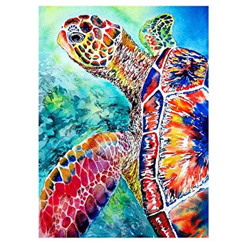 355x355 Huge Collection Of 'sea Turtle Drawing Color' Download More Than