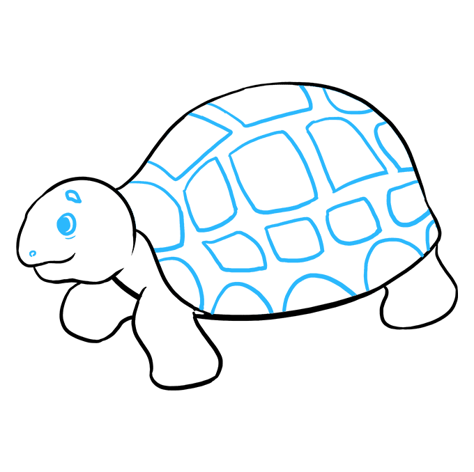 680x678 Pictures Of Sea Turtles To Draw