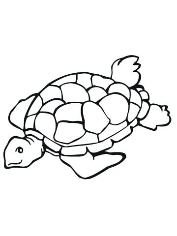 360x480 realistic turtle coloring pages realistic sea turtle coloring