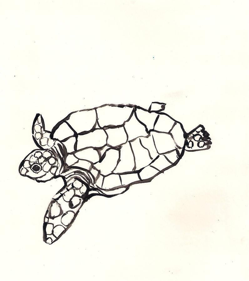 796x900 Sea Turtle Drawing Fabulous Isolated Sea Turtle Drawing Stock